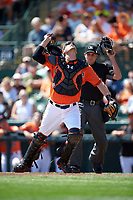 Baltimore Orioles catcher Matt Wieters (32) looks for a popup in front of umpire John Tumpane during a Spring Training game against the Minnesota Twins on March 7, 2016 at Ed Smith Stadium in Sarasota, Florida.  Minnesota defeated Baltimore 3-0.  (Mike Janes/Four Seam Images)