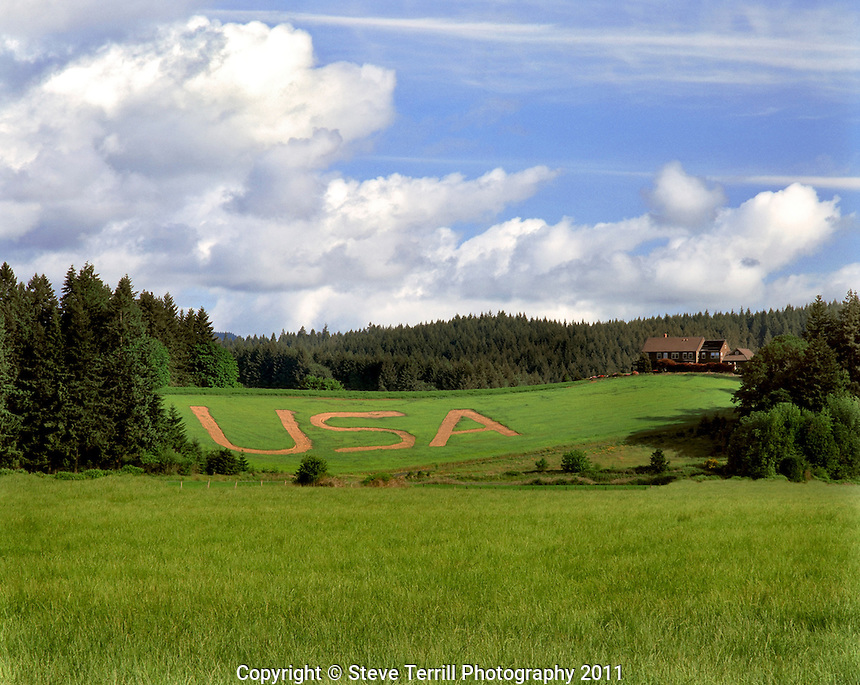 USA plowed into grass slope near North Plains, Oregon