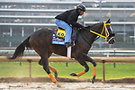 November 1, 2018: Well Defined, trained by Kathleen M. O'Connell, exercises in preparation for the Breeders' Cup Juvenile at Churchill Downs on November 1, 2018 in Louisville, Kentucky. Jamey Price/Eclipse Sportswire/CSM