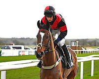Winner of The SW Catering Chase  Colorado Doc ridden by Connor Brace and trained by David Brace during Horse Racing at Plumpton Racecourse on 10th February 2020