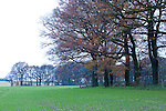 Europa, DEU, Deutschland, Nordrhein Westfalen, NRW, Rheinland, Niederrhein, Toenisberg, Schaephuysener Hoehen, Waldrand, Baeume, Herbst, Kategorien und Themen, Natur, Umwelt, Landschaft, Jahreszeiten, Stimmungen, Landschaftsfotografie, Landschaften, Landschaftsphoto, Landschaftsphotographie, ....[Fuer die Nutzung gelten die jeweils gueltigen Allgemeinen Liefer-und Geschaeftsbedingungen. Nutzung nur gegen Verwendungsmeldung und Nachweis. Download der AGB unter http://www.image-box.com oder werden auf Anfrage zugesendet. Freigabe ist vorher erforderlich. Jede Nutzung des Fotos ist honorarpflichtig gemaess derzeit gueltiger MFM Liste - Kontakt, Uwe Schmid-Fotografie, Duisburg, Tel. (+49).2065.677997, ..archiv@image-box.com, www.image-box.com]