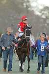 Ride On Curlin (KY) with jockey Calvin H. Borel aboard before the running of the Southwest Stakes (Grade III) at Oaklawn Park in Hot Springs, Arkansas on February 17, 2014. (Credit Image: © Justin Manning/Eclipse/ZUMAPRESS.com)