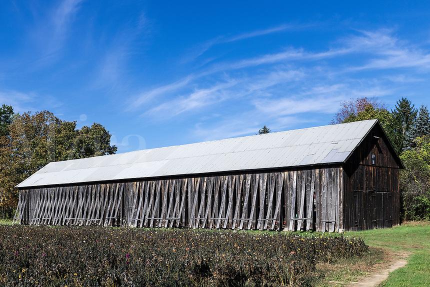 A tobacco barn, South Deerfield, Massachusetts, USA.