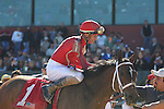 HOT SPRINGS, AR - MARCH 19: Call Pat (1) with jockey Joseph Rocco, Jr. aboard after winning the Azeri Stakes at Oaklawn Park on March 19, 2016 in Hot Springs, Arkansas. (Photo by Justin Manning/Eclipse Sportswire/Getty Images)