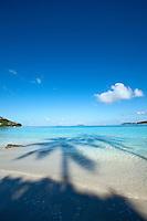 Shadows of the palm trees<br /> Little Cinnamon Bay<br /> Virgin Islands National Park<br /> St. John, U.S. Virgin Islands