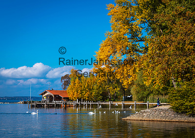 Deutschland, Bayern, Herbst im Chiemgau, bei Uebersee-Feldwies: kleine idyllische Bucht beim Chiemgauhof | Germany, Bavaria, Chiemgau, near Uebersee-Feldwies: autumn scene -  idyllic bay near hotel 'Chiemgauhof'