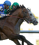 06 March 2010: Paddy O'prado (1) and Lethal Combination (4) the Palm Beach Stakes at Gulfstream Park in Hallandale Beach, FL.