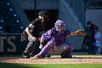 Furman Paladins catcher Logan Taplett (7) frames a pitch as home plate umpire Jon Byrne looks on during the game against the Wake Forest Demon Deacons at BB&T BallPark on March 2, 2019 in Charlotte, North Carolina. The Demon Deacons defeated the Paladins 13-7. (Brian Westerholt/Four Seam Images)