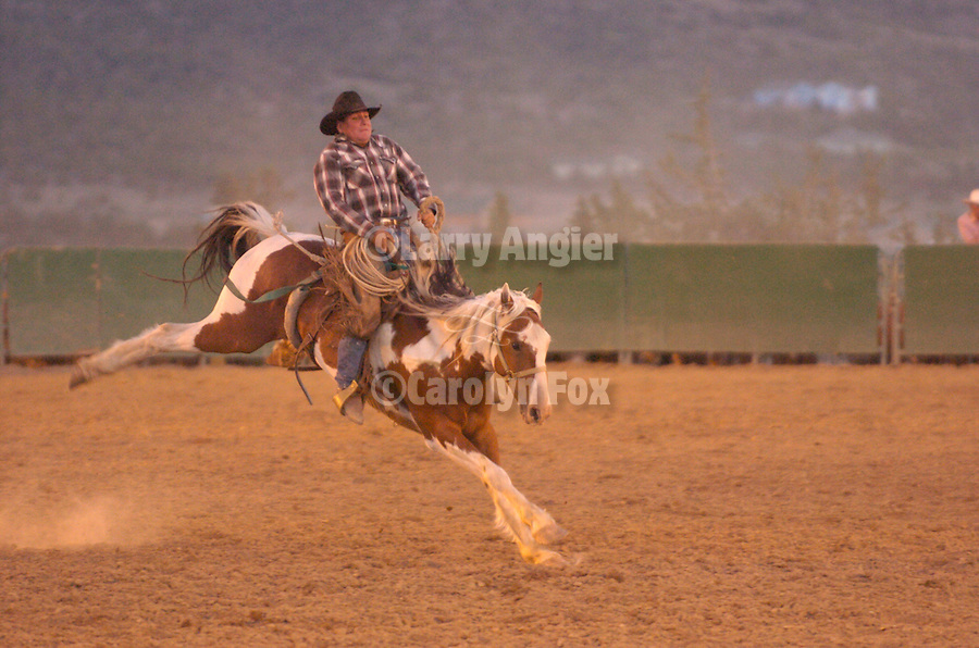 A cowboy rides a bucking broncs who kicks up its heals in the dirt during the Minden Ranch Rodeo, Nev.
