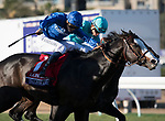 DEL MAR, CA - NOVEMBER 04: Talismanic #1, ridden by Mickael Barzalona, turns onto the home stretch on the way to winning the Longines Breeders' Cup Turf on Day 2 of the 2017 Breeders' Cup World Championships at Del Mar Racing Club on November 5, 2017 in Del Mar, California. (Photo by Michael McInally/Eclipse Sportswire/Breeders Cup/