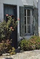 Europe/France/Poitou-Charentes/17/Charente-Maritime/Ile de Ré/Saint-Martin-de-Ré: Vieille maison sur le port et roses trémières