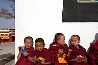 Young Tibetan boys at the Upper Wutan Monastery, Rebgong (Chinese name - Tongren),  on the Qinghai-Tibetan Plateau. China.