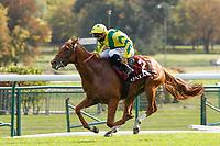 4th October 2020, Longchamp Racecourse, Paris, France; Qatar Prix de l Arc de Triomphe;  Sealiway ridden by Michael Barzalona wins the Prix Jean-Luc Lagardere