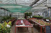 Garden Centres Reopen - 13.05.2020