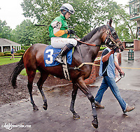 Arch Pistol with Lisa O'Neill aboard before The International Ladies Fegentri Race at Delaware Park on 6/10/13