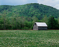 Old barn in the Germany Valley; Monongahela National Forest, WV