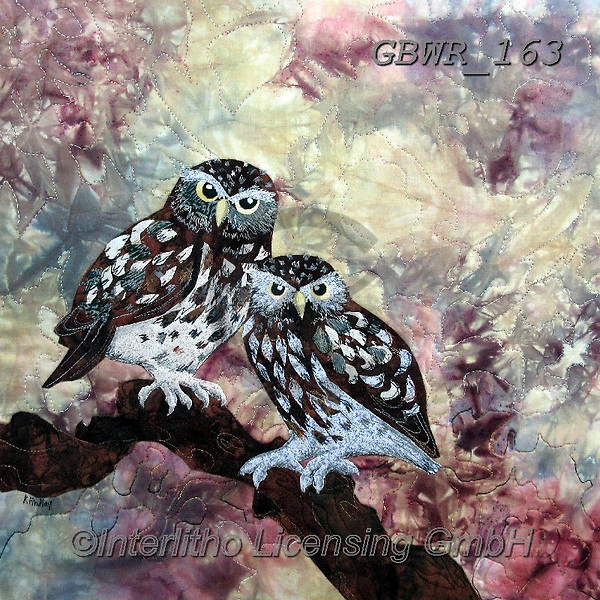 Simon, REALISTIC ANIMALS, REALISTISCHE TIERE, ANIMALES REALISTICOS, innovative, paintings+++++KateFindlay_LittleOwls.,GBWR163,#a#, EVERYDAY