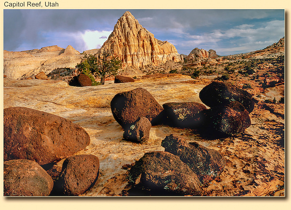The slickrock of Capitol Reef National Park, Utah. <br />