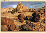 The slickrock of Capitol Reef National Park, Utah. <br /> John Kieffer offers Capitol Reef National Park photo tours. Year-round Utah photo tours.