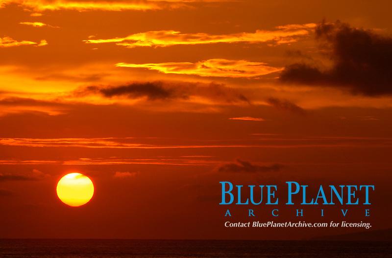 Sunrise, Kohala Coast, Big Island, Hawaii, USA, Pacific Ocean