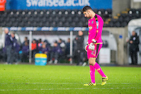 SWANSEA, WALES - NOVEMBER 08:during the  EFL Checkatrade Trophy match between Swansea City FC and Plymouth Argyle FC at The Liberty Stadium, Swansea, Wales, UK. 08 November 2016