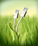 Illustrative image of USB cables growing in field representing green technology