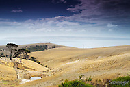 Image Ref: CA071<br /> Location: Willoughby, Kangaroo Island<br /> Date: 20th April 2014