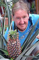Pictured: Nick Kift with the pineapple he has grown in Pembrokeshire, Wales, UK<br />