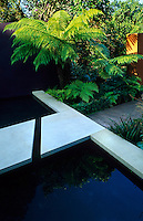Reflective pond with sandstone edging and stepping stones. In the background a rusted steel wall with tree ferns is underplanted with ferns edged in Box