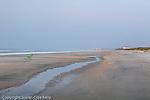 Beach sunrise, Huntington Beach State Park, SC