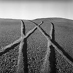 Off Road car tracks across Atacama Desert. Chile 2000