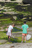 France, Pas-de-Calais (62), Côte d'Opale, Audresselles: Enfants pêcheurs de crevettes  sur le littoral rocheux //  France, Pas de Calais, Cote d'Opale (Opal Coast), Audresselles: Children shrimp fishermen on the rugged coastline