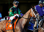 ARLINGTON HEIGHTS, IL - AUGUST 12: The Pizza Man #7, ridden by Irad Ortiz Jr., during the post parade before the Arlington Million on Arlington Million Day at Arlington Park on August 12, 2017 in Arlington Heights, Illinois. (Photo by Jon Durr/Eclipse Sportswire/Getty Images)