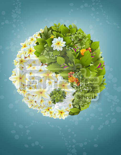 Illustrative image of leaves and flowers in yin yang symbol over blue background
