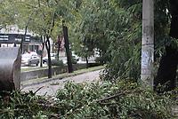 RIO DE JANEIRO, RJ. 25.02.2019-CLIMA: Chuva forte que atingiu a zona norte da cidade do Rio de Janeiro, provocando quedas de arvores e danificando muitas casas e uma agência do Banco do Brasil na Vila da Penha. (Foto: Celso Barbosa/Codigo19)