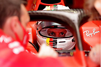 12th November 2020; Istanbul Park, Istanbul, Turkey;   FIA Formula One World Championship 2020, Grand Prix of Turkey, 5 Sebastian Vettel GER, Scuderia Ferrari Mission Winnow speaks to technicians