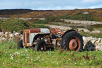 Old Ferguson T20 tractor in a field in Anglesey,Wales.
