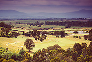 Image Ref: YV507<br />