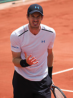 Andy Murray<br /> day 9<br /> Roland Garros 2017