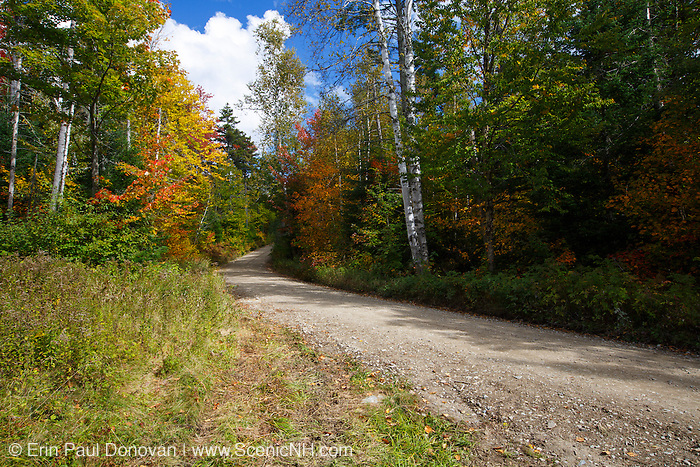 Old Jefferson Turnpike (now Old Cherry Mountain Road) in the White Mountains, New Hampshire during the autumn months. The Cohos Trail follows this road.