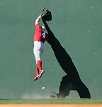 South Carolina left fielder Robert Beary (4) goes high against the Green Monster but misses the ball during a game between the Clemson Tigers and South Carolina Gamecocks Saturday, March 6, 2010, at Fluor Field at the West End in Greenville, S.C. The ball dropped for a double. Photo by: Tom Priddy/Four Seam Images