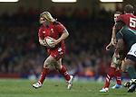 Wales hooker Richard Hibbard<br /> <br /> 2013 Dove Men Series<br /> Wales v South Africa<br /> Millennium Stadium<br /> 09.11.13<br /> ©Steve Pope-Sportingwales