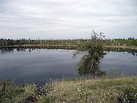Glassy water on Bellis Lake, Alberta.