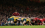 Wales scrum half Rhys Webb waits to put the ball into the scrum.<br /> Dove Men Series 2014<br /> Wales v Australia<br /> Millennium Stadium<br /> 08.11.14<br /> ©Steve Pope-SPORTINGWALES