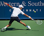 Novak Djokovic loses in the finals at the Western & Southern Open in Mason, OH on August 19, 2012.
