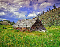 F00100M.tiff   Abandoned pioneer cabin in pasture. Near Burns, Oregon