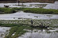 Afrique/Egypte: Pêcheurs sur les bords du Nil