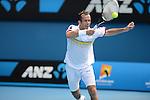 Radek Stepanek (CZE) loses at the Australian Open in Melbourne, Australia on January 18, 2013