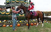 3rd Steeplethon Stakes - Dapper Dan