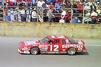 Neil Bonnett 12 Chevrolet action Daytona 500 at Daytona International Speedway in Daytona Beach, FL in February 1986. (Photo by Brian Cleary/www.bcpix.com) Daytona 500, Daytona International Speedway, Daytona Beach, FL, February 16, 1986.  (Photo by Brian Cleary/www.bcpix.com)